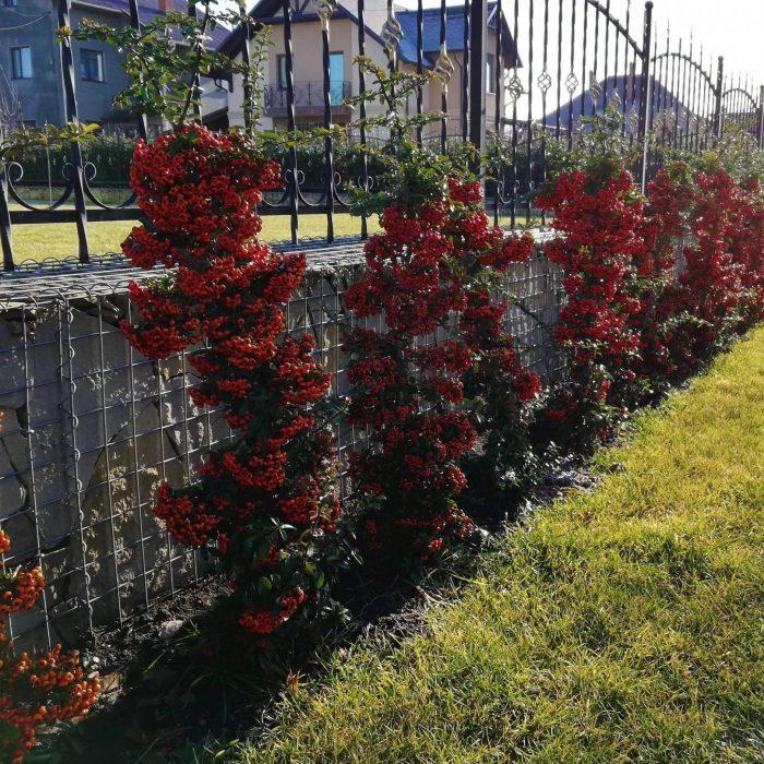 Gabion decorativ pentru temelie gard