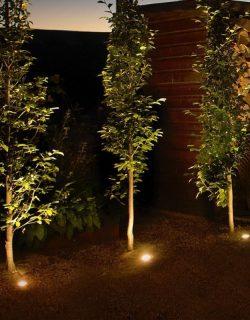 Lightpro sistem iluminare decorativa