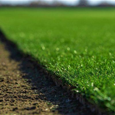 Procesul de recoltare a rulourilor de gazon